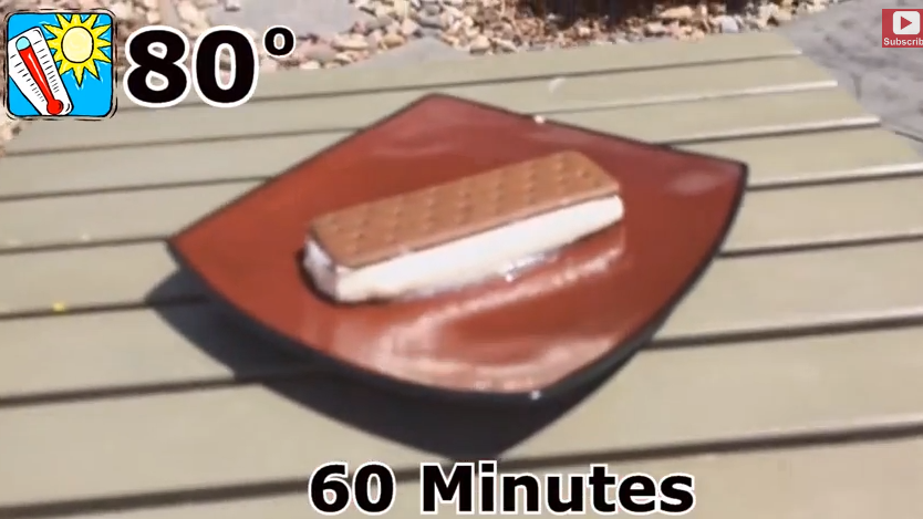 Walmart Ice Cream Sandwich Won't Melt! We Prove...