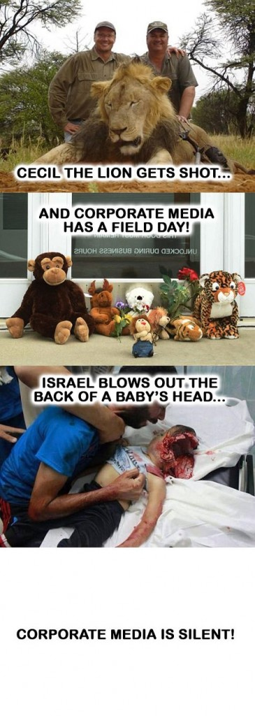 Israeli Settlers Burn 18 Month Palestinian Baby, Controlled...
