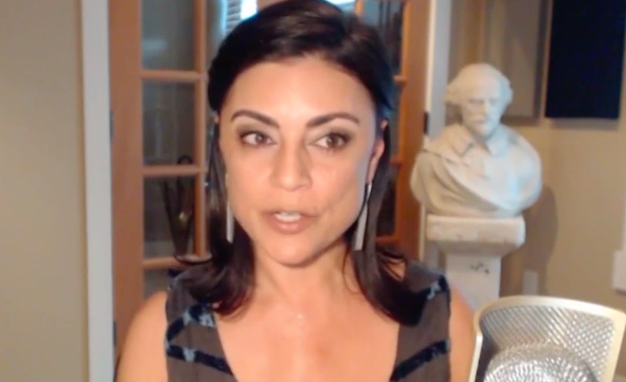 Sibel Edmonds Shines A Light on the Brussels Attacks