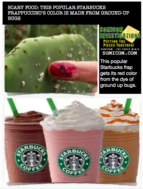 Scary Food Starbucks Bug Colors