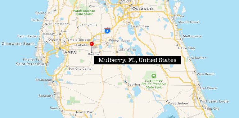 mulberry-fl-united-states