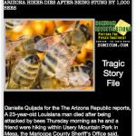 1000 Bees Kill Man