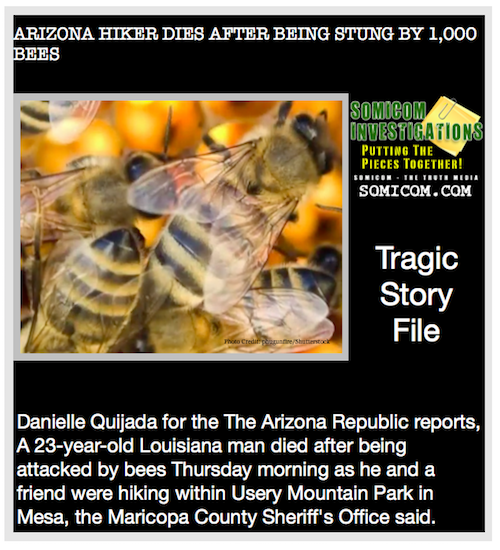 Tragic Story File: ARIZONA HIKER DIES AFTER BEING STUNG BY 1,000 BEES